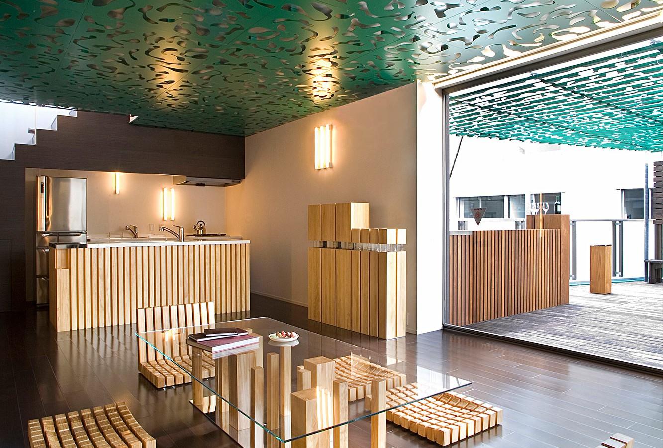 Penthouse Apartment Aoyama Tokyo Carbondale